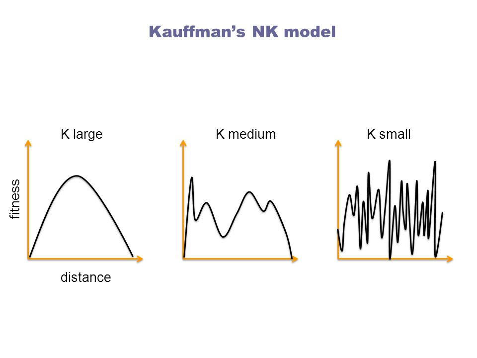 Kauffman's NK model K large K medium K small fitness distance