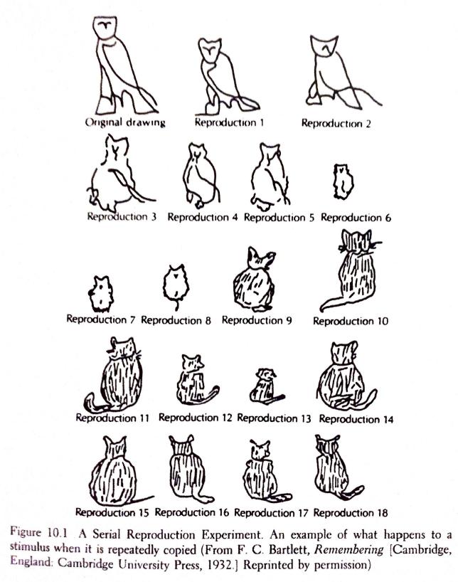 Owl2Cat